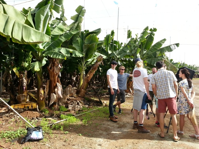 The team in the banana plantation